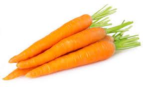 hamsters eat carrots